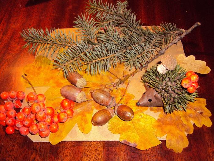 Осенние поделки для детсада фото