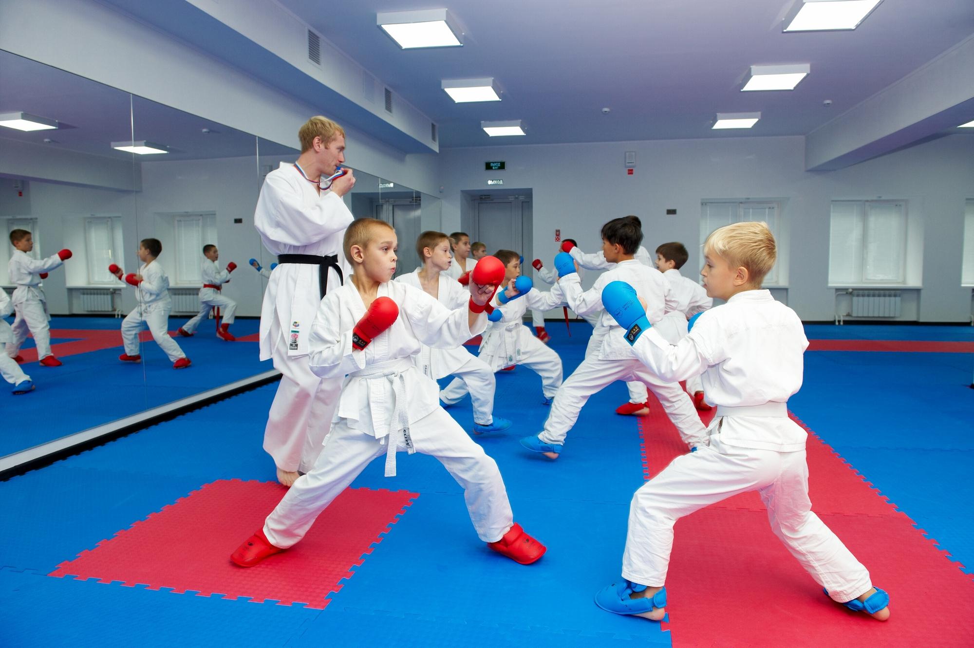 Боевые искусства для детей с 3 лет спб