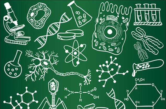 Biology sketches on school board. Vector illustration.